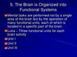 5 the brain is organized into functional systems