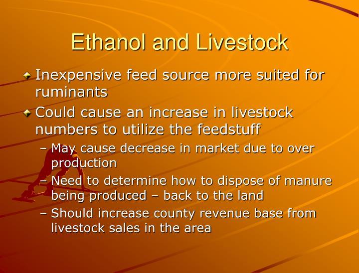 Ethanol and Livestock