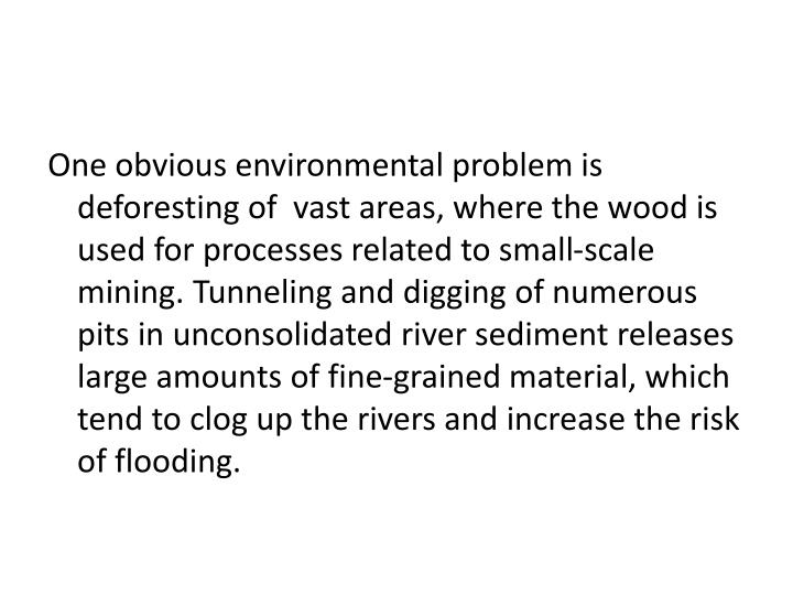 One obvious environmental problem is deforesting of  vast areas, where the wood is used for processes related to small-scale mining.