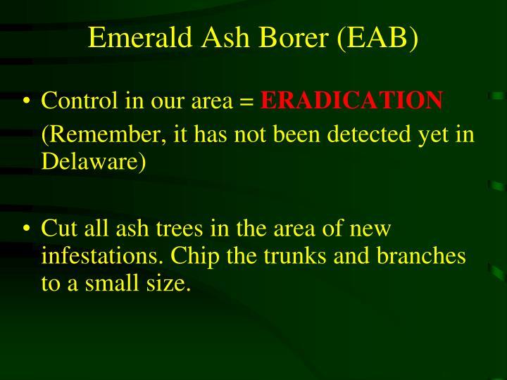 Emerald Ash Borer (EAB)