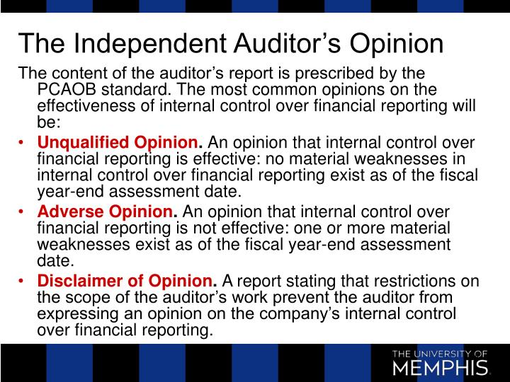 The Independent Auditor's Opinion