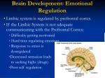 brain development emotional regulation