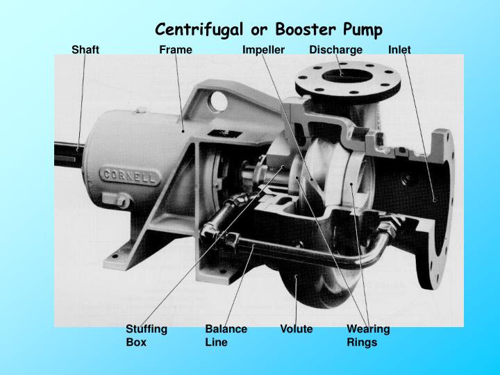 Centrifugal or Booster Pump