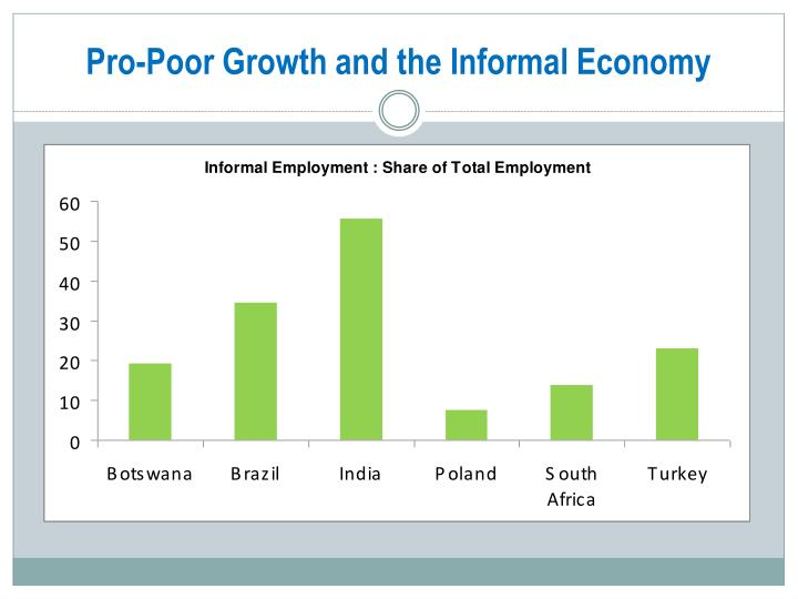 Pro-Poor Growth and the Informal Economy