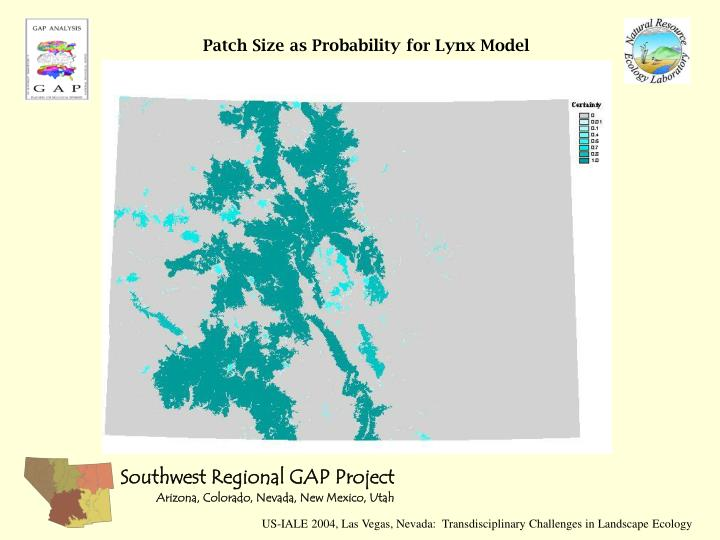 Patch Size as Probability for Lynx Model