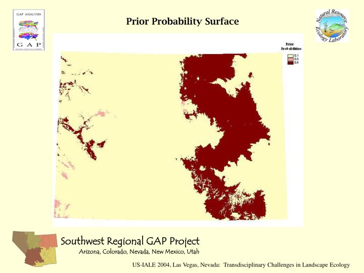 Prior Probability Surface