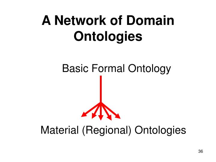 A Network of Domain Ontologies