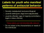 labels for youth who manifest patterns of antisocial behavior