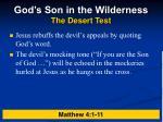 god s son in the wilderness the desert test5