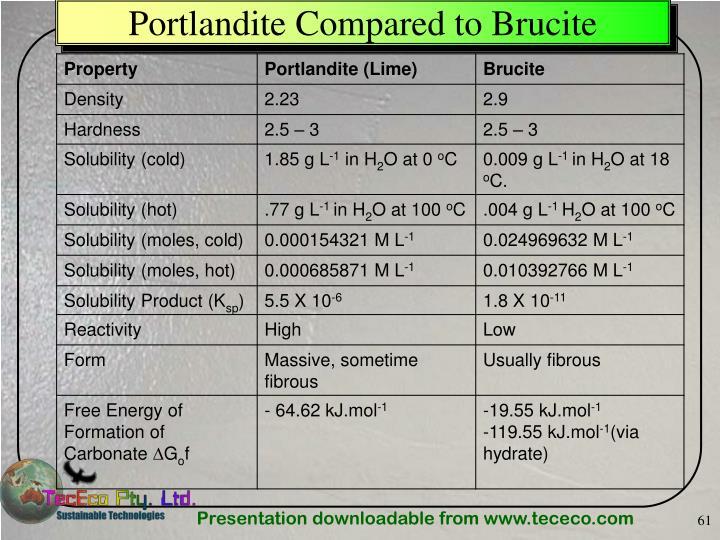 Portlandite Compared to Brucite
