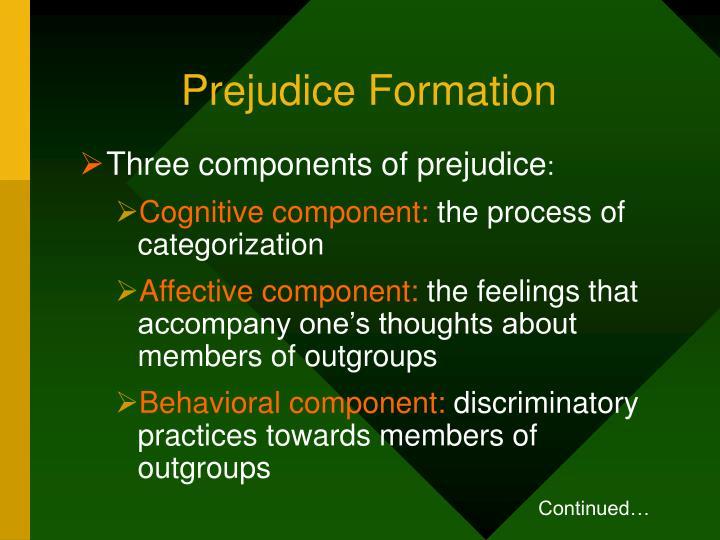 Prejudice Formation