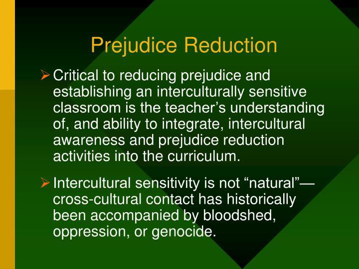 Prejudice Reduction