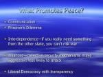 what promotes peace
