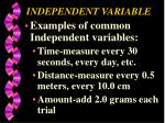 independent variable2
