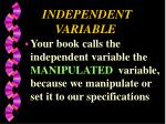 independent variable3