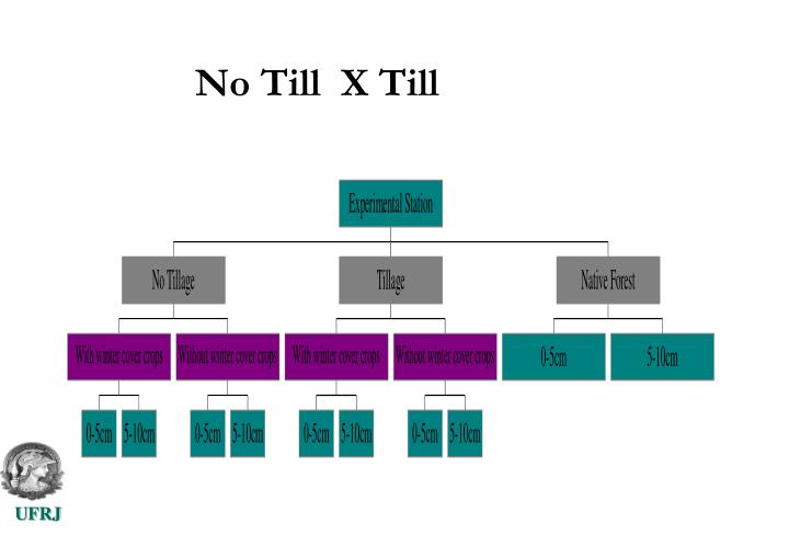 No Till  X Till