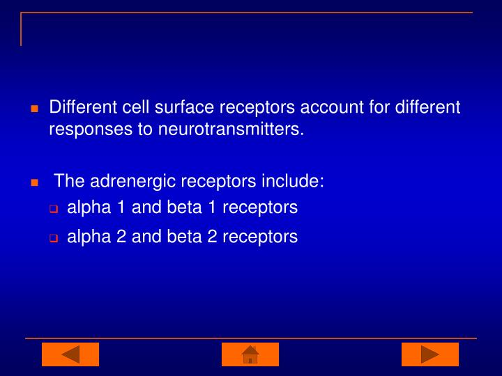 Different cell surface receptors account for different responses to neurotransmitters.