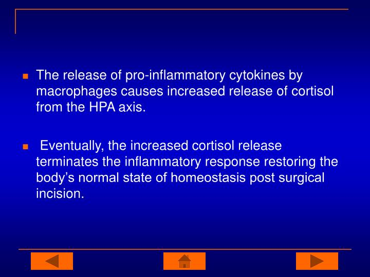 The release of pro-inflammatory cytokines by macrophages causes increased release of cortisol from the HPA axis.