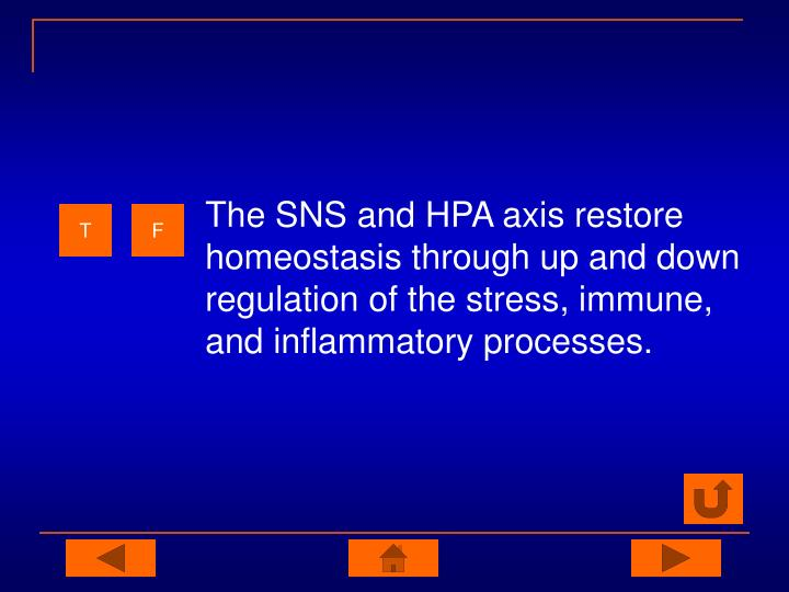 The SNS and HPA axis restore homeostasis through up and down regulation of the stress, immune, and inflammatory processes.