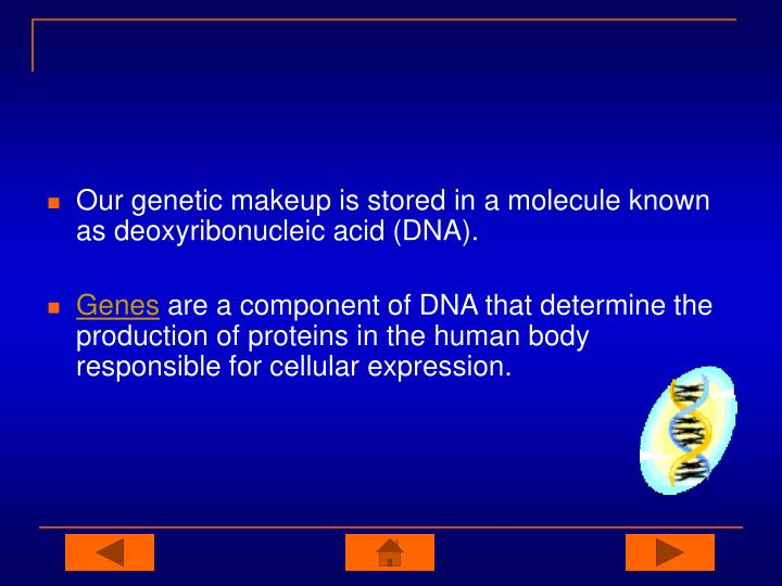 Our genetic makeup is stored in a molecule known as deoxyribonucleic acid (DNA).