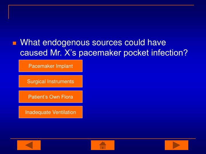 What endogenous sources could have caused Mr. X's pacemaker pocket infection?