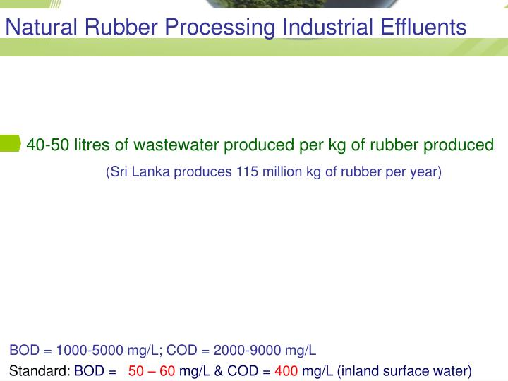 Natural Rubber Processing Industrial Effluents
