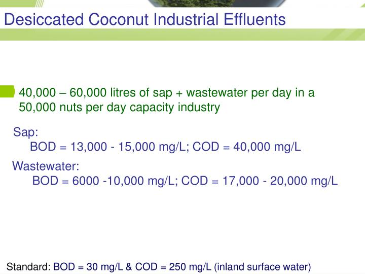 Desiccated Coconut Industrial Effluents