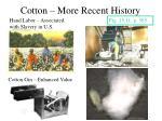 cotton more recent history