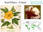 seed fibers cotton