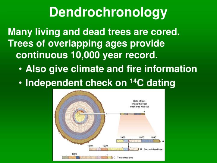 Dendrochronology dating method