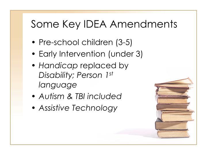 Some Key IDEA Amendments