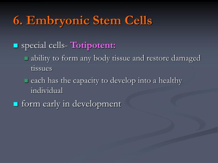 6. Embryonic Stem Cells