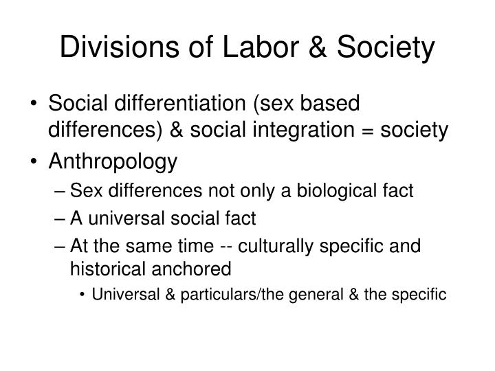 Divisions of Labor & Society