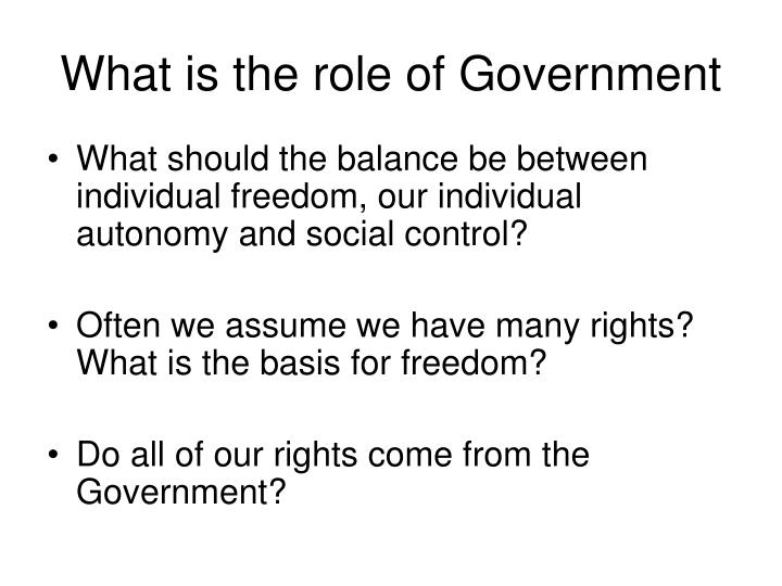 What is the role of Government