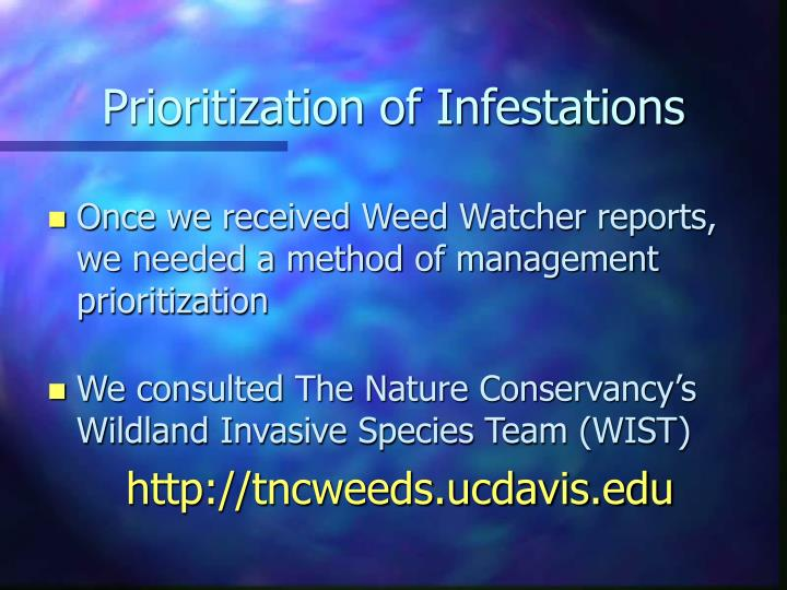 Prioritization of Infestations