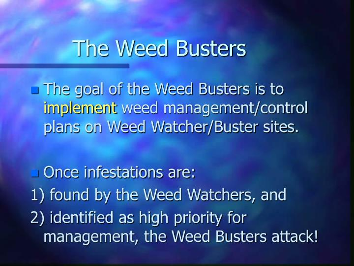 The Weed Busters