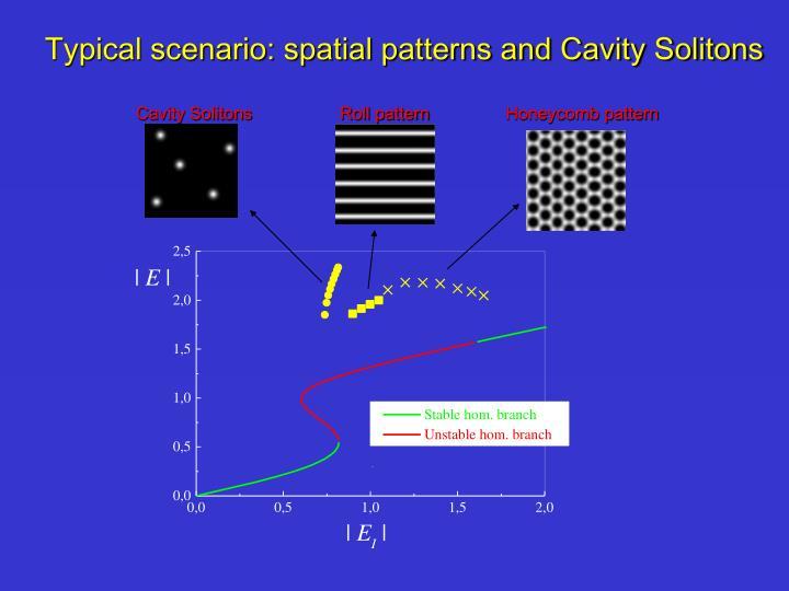 Cavity Solitons
