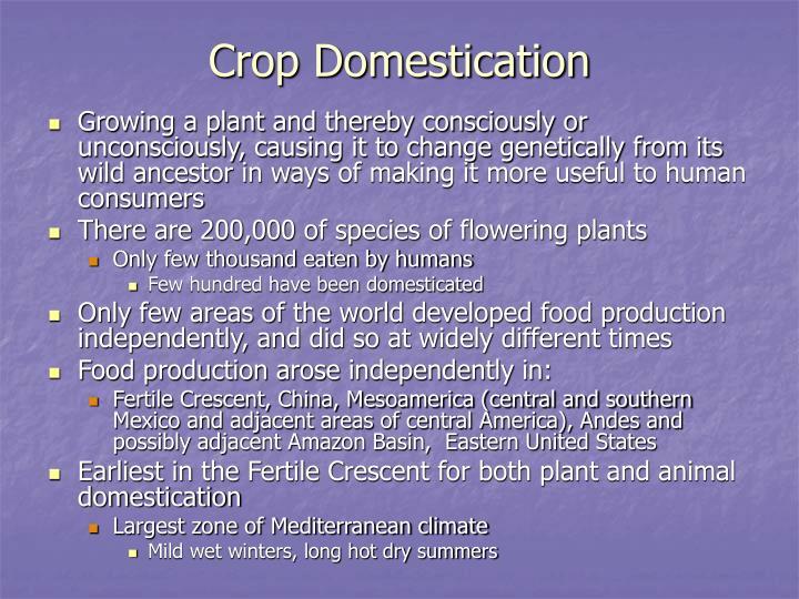 Crop Domestication