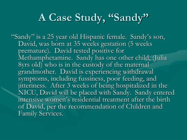 """A Case Study, """"Sandy"""""""