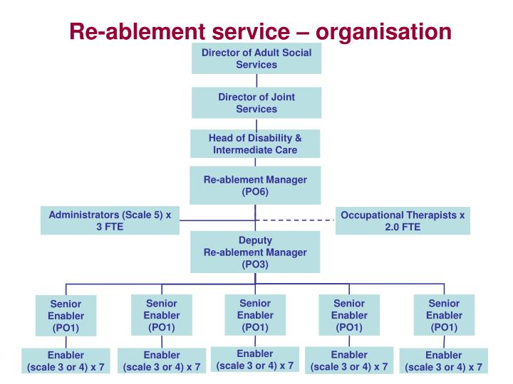 Re-ablement service – organisation structure