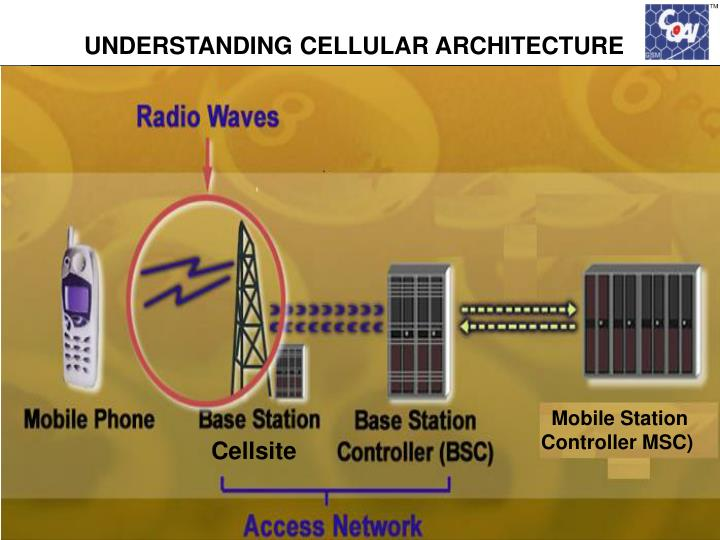 UNDERSTANDING CELLULAR ARCHITECTURE