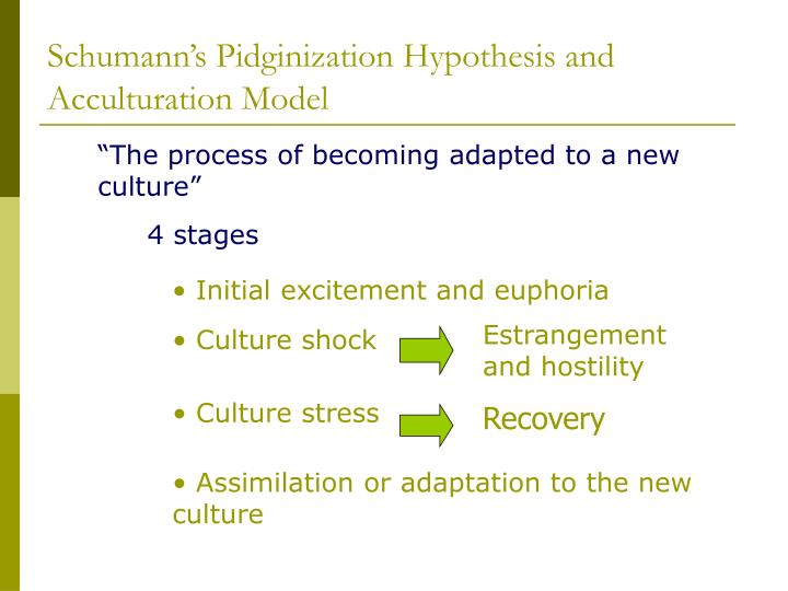 Schumann's Pidginization Hypothesis and Acculturation Model