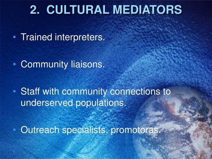 2.  CULTURAL MEDIATORS