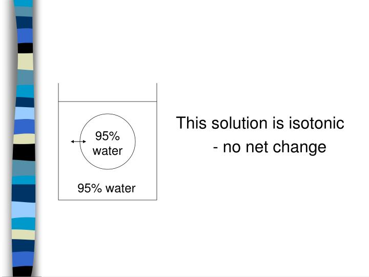 95% water