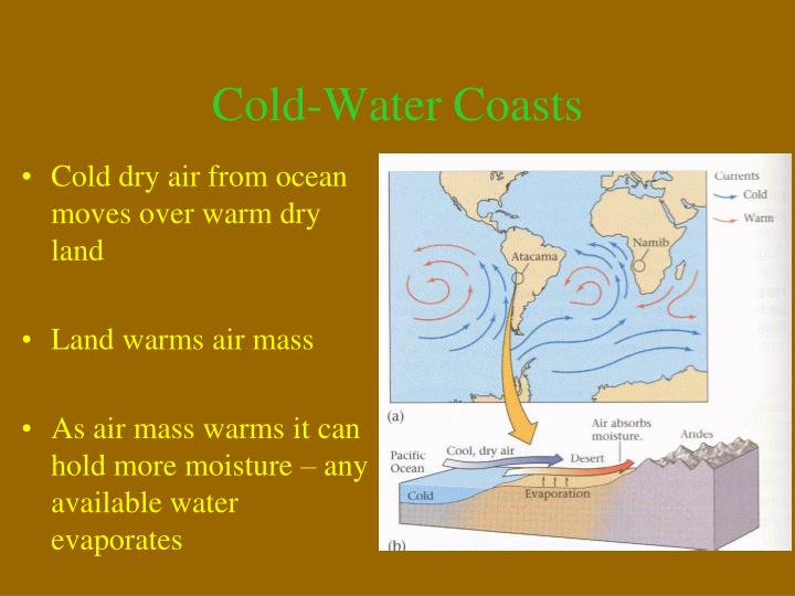 Cold-Water Coasts