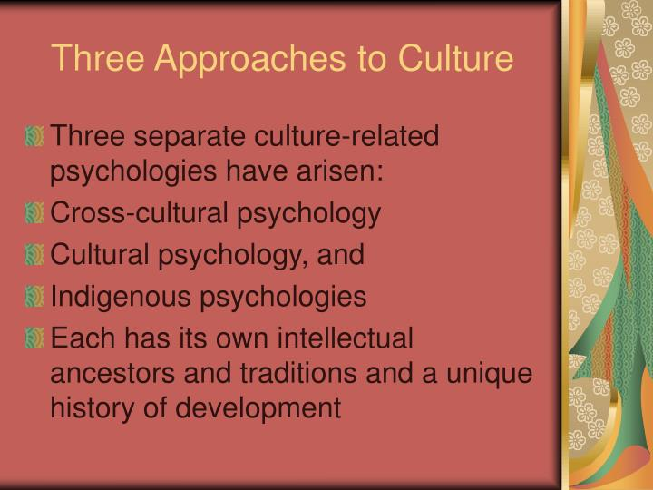 Three Approaches to Culture