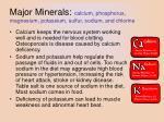 major minerals calcium phosphorus magnesium potassium sulfur sodium and chlorine
