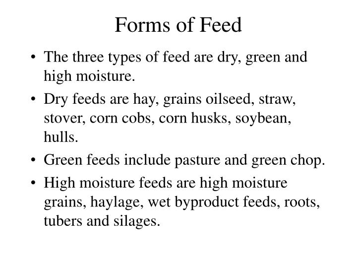 Forms of Feed