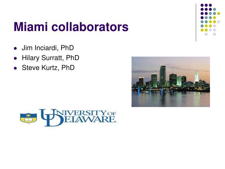 Miami collaborators