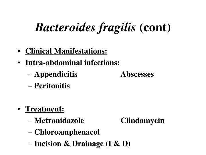 Bacteroides fragilis